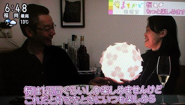 NHKおはよう日本コハルライト